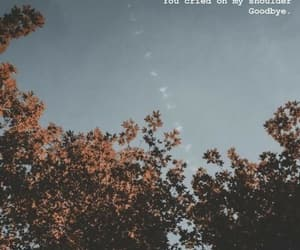 aesthetics, goodbyes, and trees image