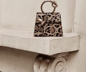 animal print, bag, and fashion image