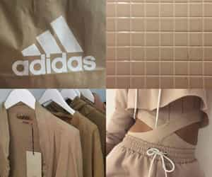 adidas, brown, and moodboard image