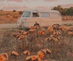 flowers, car, and sunset image
