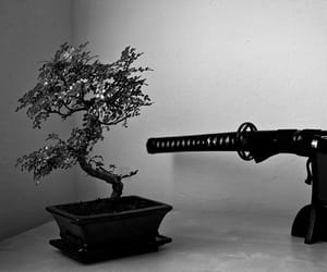 aesthetic, black and white, and asian image