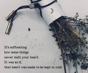 Dead Flowers, quote, and quotes image