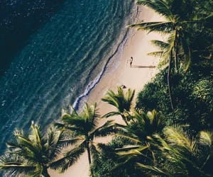 beach, nature, and paradise image