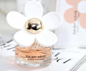 daisy love perfume image