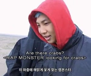 crab, crabs, and meme image