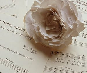 music and rose image