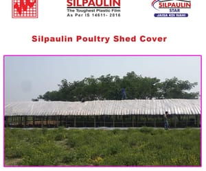 poultry curtains supplier and poultry shed cover image