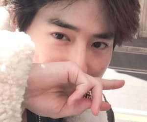 exo, suho, and cotton image