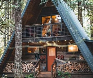cabin and forest image