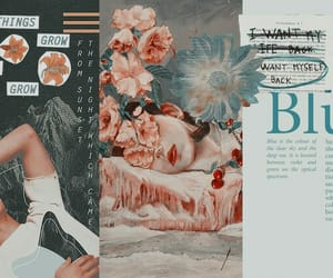 Collage, header, and tumblr image