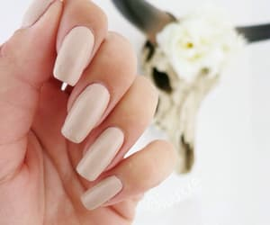 nails, beige, and pretty image