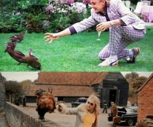 80's, crush, and Freddie Mercury image
