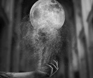 artistic, beautiful, and black&white image
