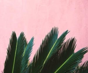 green, inspiration, and pink image