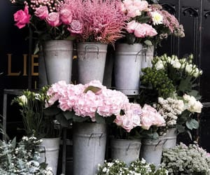 bloom, flowers, and indie image