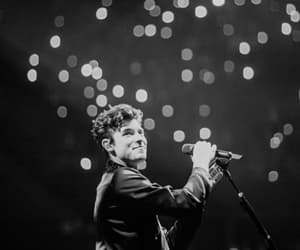 shawn mendes and concert image