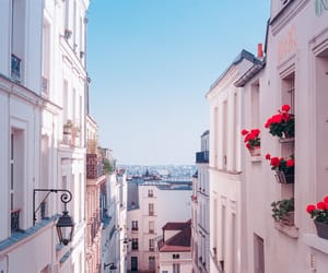 aesthetics, flowers, and france image