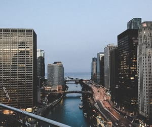 buildings, chicago, and city image