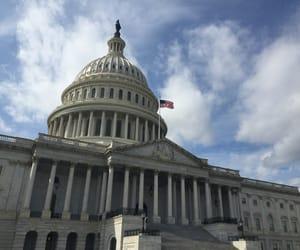 capitol, washington, and DC image
