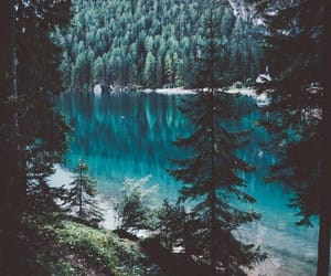 nature, forest, and lake image