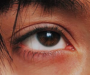 brown, brown eyes, and chocolate image