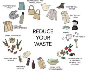article, eco friendly, and enviroment image