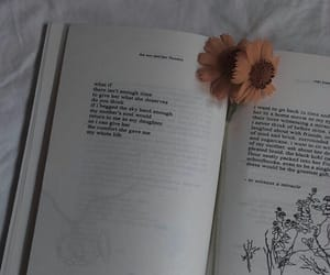 aesthetic, flower, and poet image