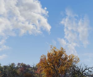 autumn, clouds, and appalachia image