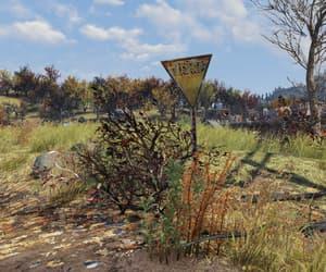 autumn, appalachia, and fallout image