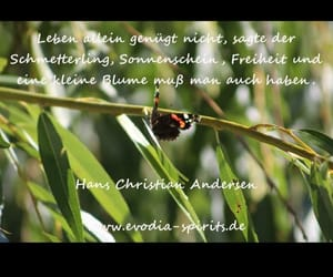 deutsch, german, and text image