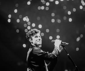 bae, the tour, and shawn mendes image