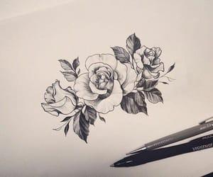 art, rose, and darwing image