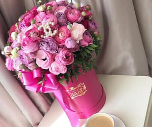 flowers, pink, and bloom image
