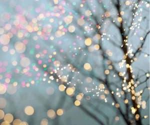 light, christmas, and tree image