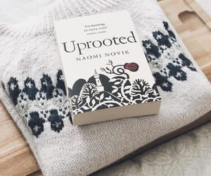 beautiful, book, and books image