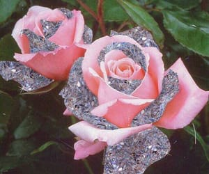 girly, glitter, and roses image