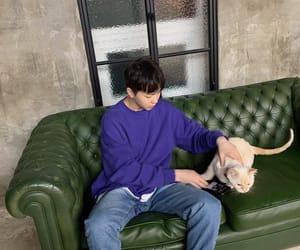 idol, kitty, and kpop image