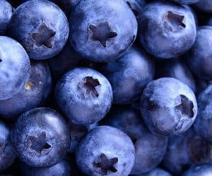 blueberry, wallpaper, and fruit image