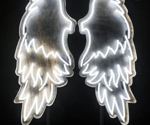 aesthetic, Alas, and wings image