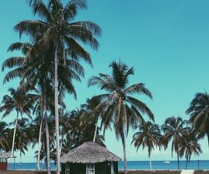 beach, holiday, and sun image