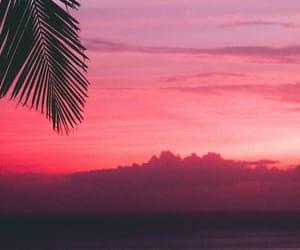 Aloha, background, and beautiful image