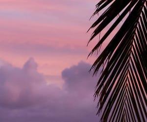 Aloha, background, and color image