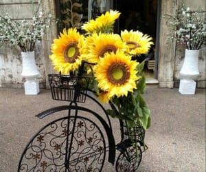 bicycle, bouquet, and decorations image