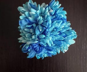 amazing, blue, and flower image