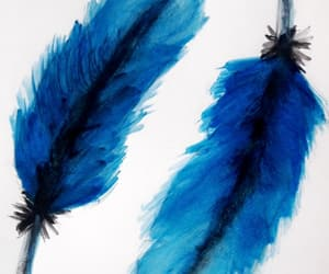 birds, blue, and feathers image