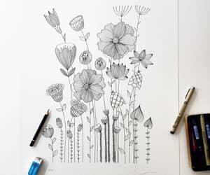 art, botanical, and drawing image