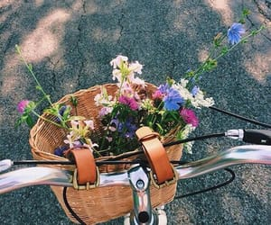 flowers, spring, and tumblr image