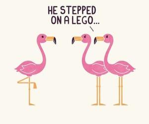 animals, art, and flamingo image