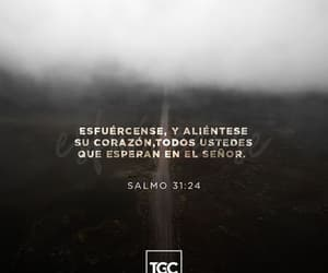 amor, bible, and frases image