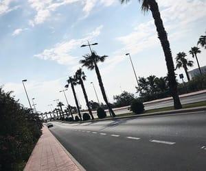 Malaga, palm, and palmtrees image